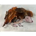 Anna's hedgehog