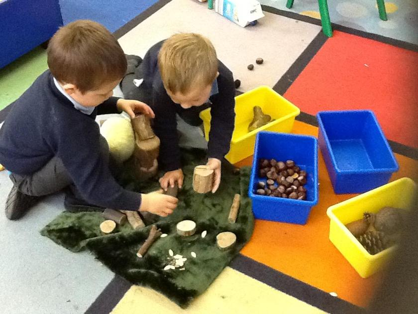 Making a habitat for the Owl Babies.
