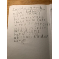 Max R's diary entry