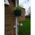 Zachary's bird feeders