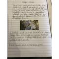 Heidi's koala facts