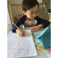 Lucas has been working hard at home.