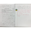 Vivaan used adventurous vocabulary to write this superb diary entry as Beegu.
