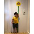 Woojin has made an amazing sunflower.