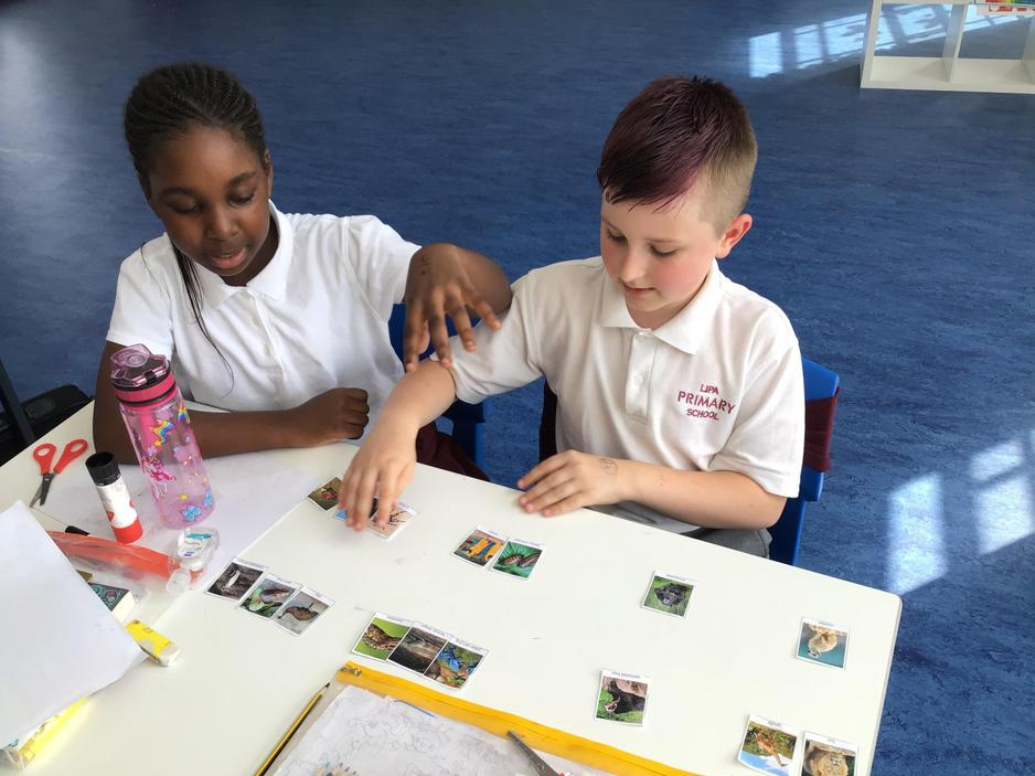 Classifying animals in science!