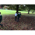 Year 4Labryinth building and leaf dectectives