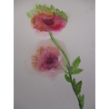 Waterr Colour Blooms Year 5 and 6