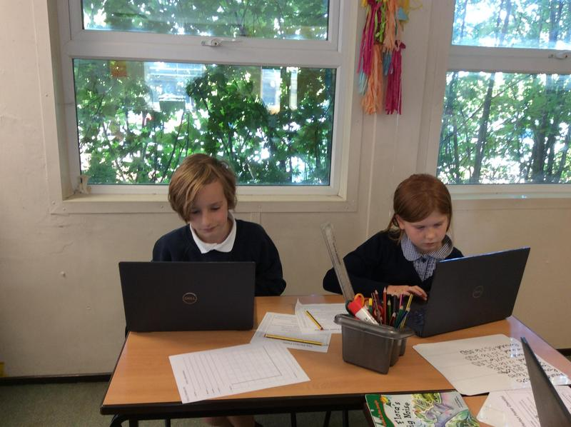 Computing in Robins