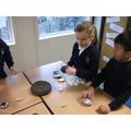 Investigating magnets