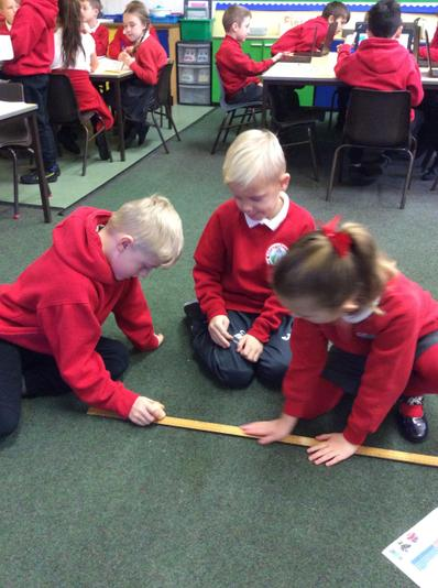 We used concrete resources to measure the beds.