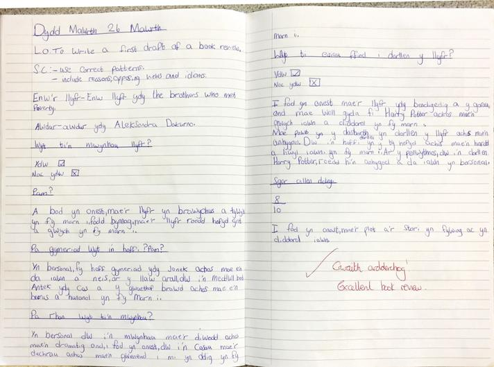 Henry's Welsh Book Review