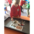 Sorting animals into their habitat