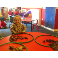 Sorting our Autumn objects