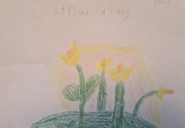 Lexie's daffodils