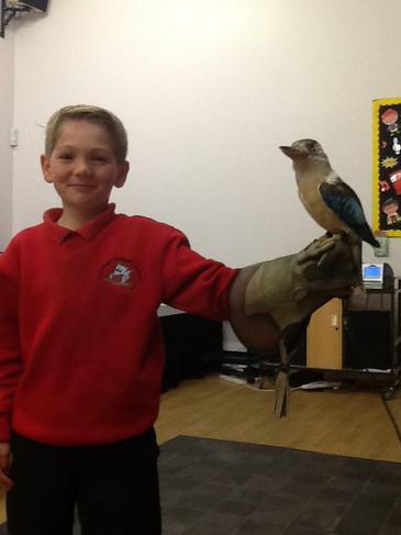 George with Blue a Kookaburra.