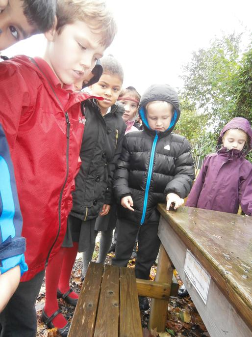Sadly the weather wasn't brilliant but we had fun!