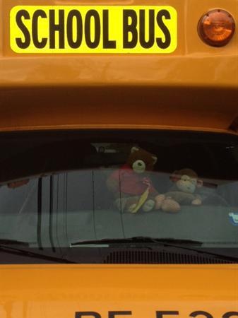 Munkey the Monkey loved the school bus!