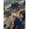 More Excavation
