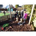 We have enjoyed gardening