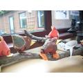 Birds on a branch! Key Stage 2 Creative Arts