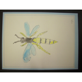 Insect - by Myles