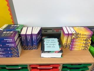 Mrs Lamb still loves her dictionaries!