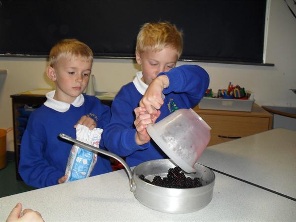Preparing to make jam