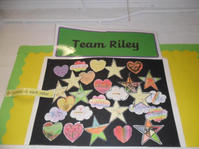 Team Riley Flag
