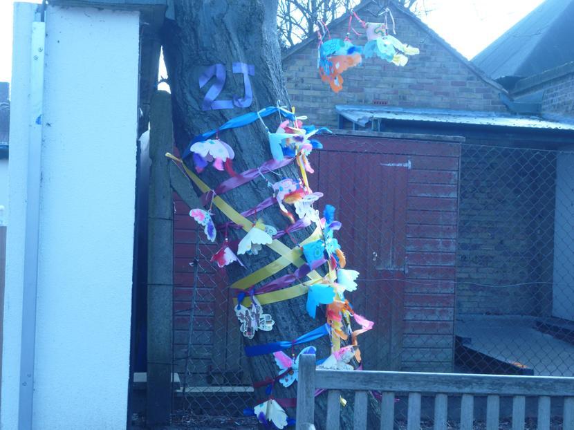 Our beautiful 2J tree!