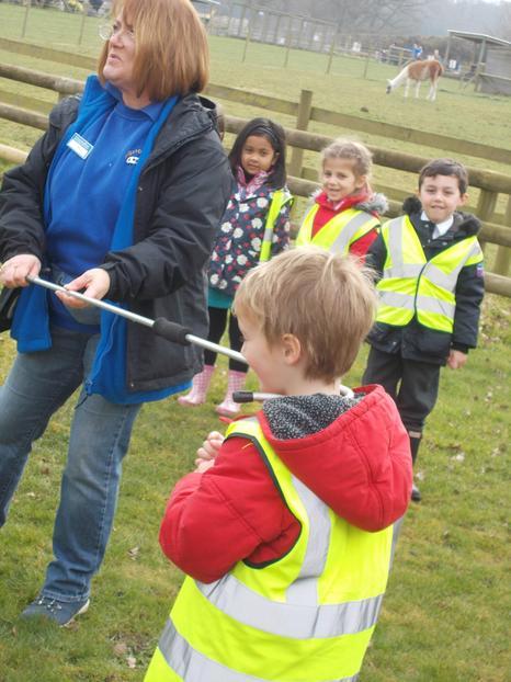 Farmer Fay shows how to catch a sheep (James)