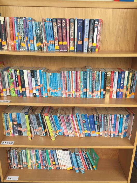 Part of AR library organised in ZPD Range