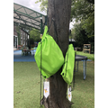 Our writing tree