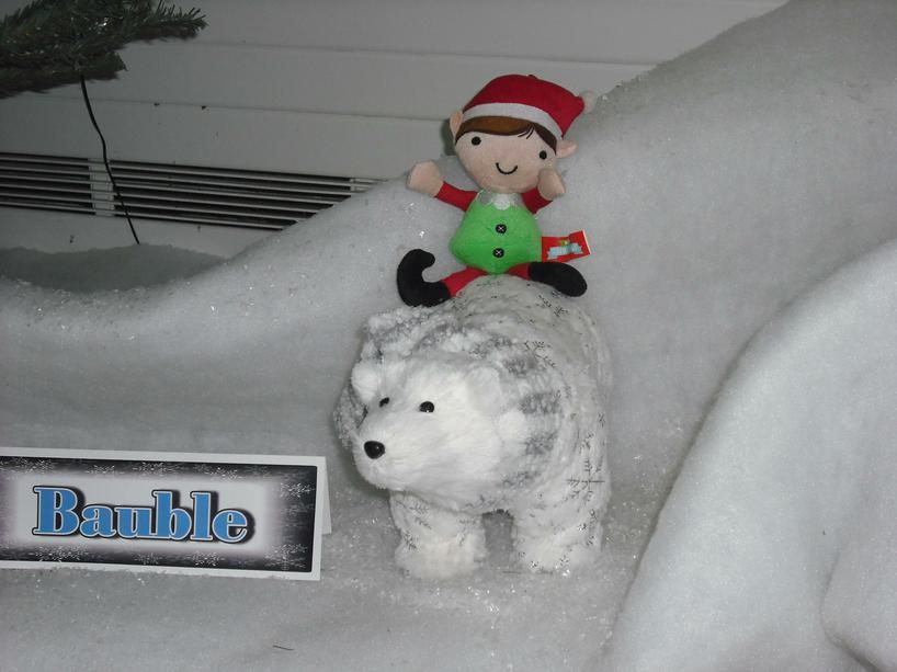Then he had a ride on a polar bear.