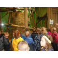 Year 1 visited Blackpool Zoo in July.
