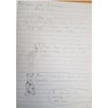 Speech bubbles work by Callum