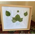 Peacock leaf artwork by Matthew