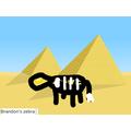 Brandon's zebra