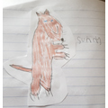 Callum's drawing of Sunny
