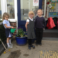 We planted the plants we bought in our garden.