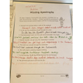 Andreea's English work!