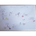 Callum's storymap