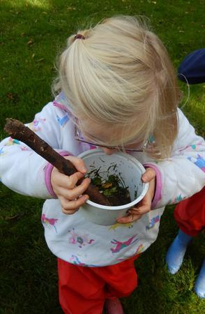 Investigating the variety of smells in nature