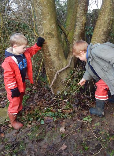 Creating cosy nests for mice to sleep on a cold...