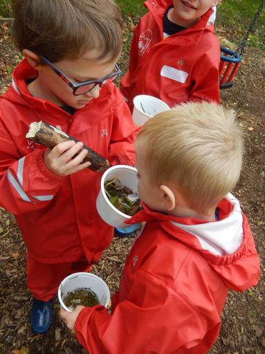 Creating a woodland perfume & learning why animals