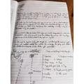 OG: Diary Entry