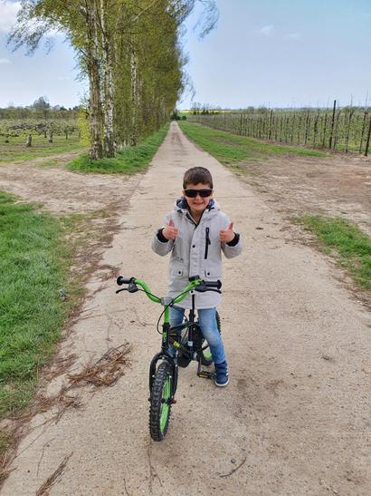 Riding a bike through the orchard