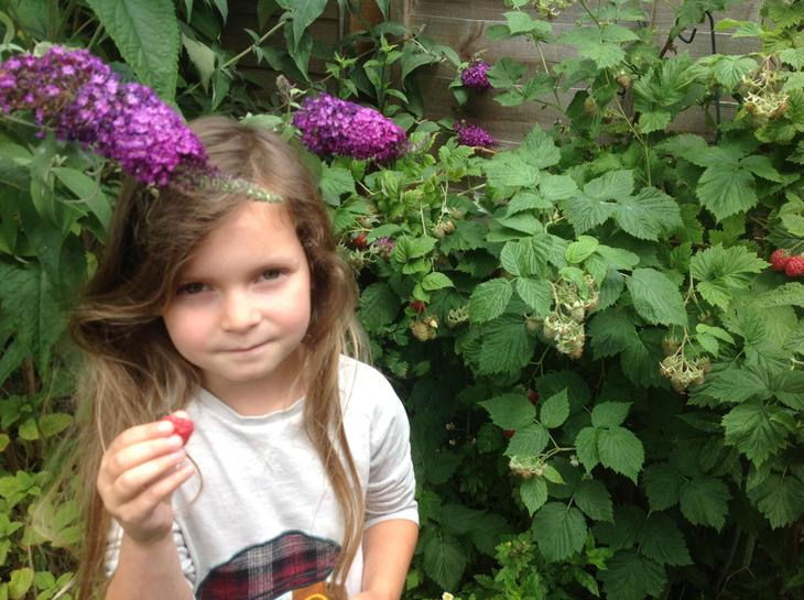 Raspberry picking in the garden!