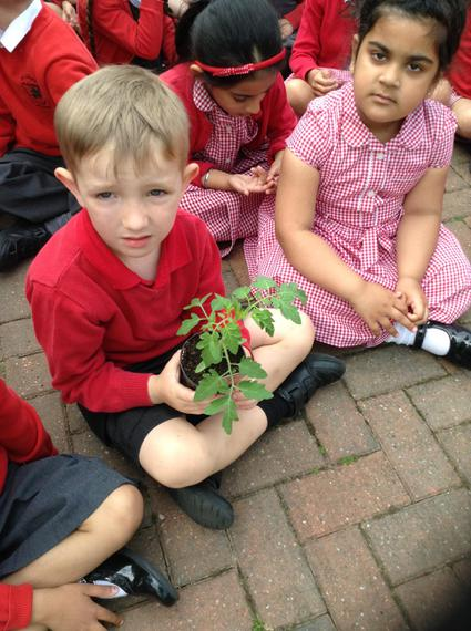Mr Gilford talked to us about plants...