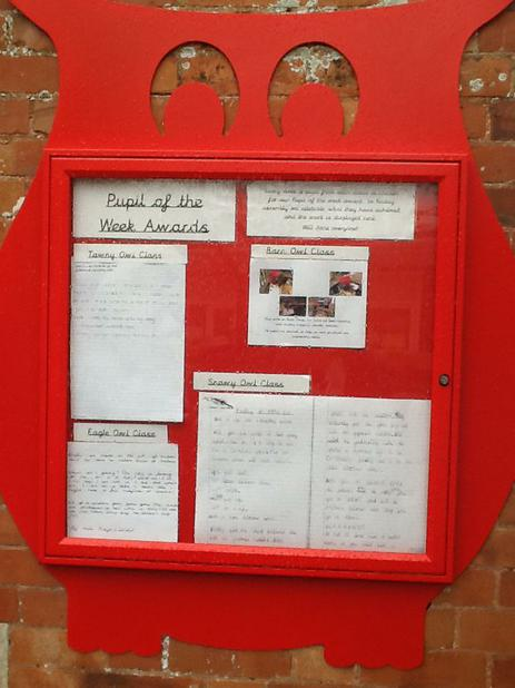Owl Noticeboard: Pupil of the week work!