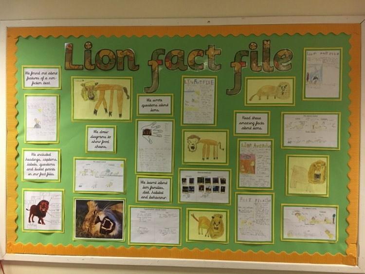 Lion Fact Files